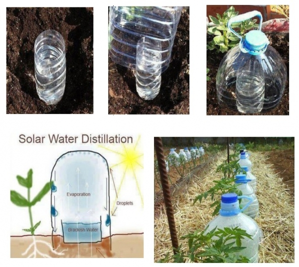 Solar distillation by recycled plastic bottle