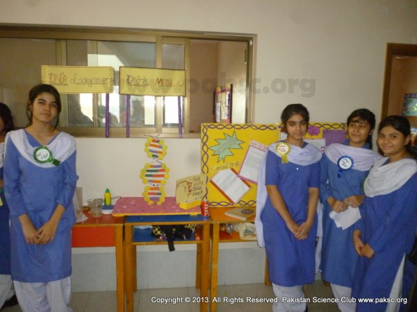 Photos of Science Fair in The Educator School
