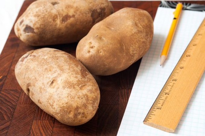 the effect of salt water on potato strip The effect of salt water on potato strip aim to investigate the effects of increasing salinity on potato cell mass background information this experiment is based upon osmosis.