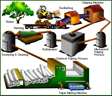 Chemical processes in wine making biology essay